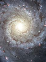 Спиральная Галактика M74 (фото Хаббла)