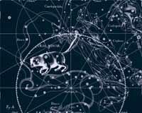 Созвездие «Малая Медведица»