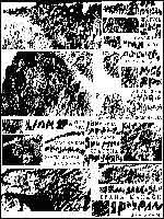 Рис. 9. Моё чтение надписей на поверхности изображения льва