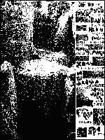 Рис. 10. Моё чтение надписей на камнях Иерихона