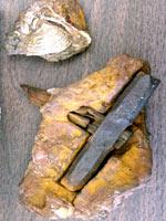 Железный молоток под названием «Молот Творца»