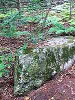 Камни на острове Петрова
