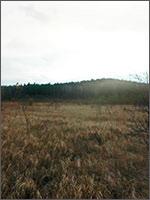 Мегалиты Урала. Остров Попов. Посёлок Верх-Нейвинский