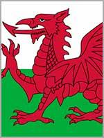 Дракон на флаге Уэльса