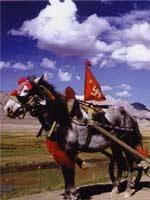 Тибетская повозка со свастикой