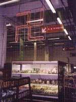 Свастика в Корее. Вегетарианский отдел супермаркета