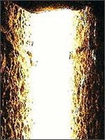 Луч в Храме Солнца. Иллюстрация из книги Светланы Левашовой «Откровение»