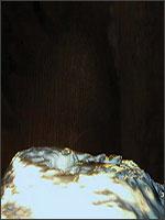 Это надгробие, видимо принадлежало девушке, ибо на нём лежит изумительная роза. Иллюстрация из книги Светланы Левашовой «Откровение»