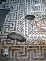 Мозаика на «римской» вилле в Чедворте, графство Глостершир, юго-запад Англии (Chedworth, Gloucestershire)