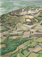 Бибракта (Bibracte). Реконструкция территории горы Мон-Бевре (Mount Beuvray) I в до н.э. по данным раскопок 2001 г.
