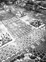 Иерихон. Дворец Хишама. Мозаика. Ощий вид, реальное фото