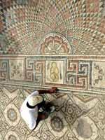 Иерихон. Дворец Хишама. Мозаика с Боговником. Фрагмент