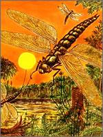 Гигантские стрекозы